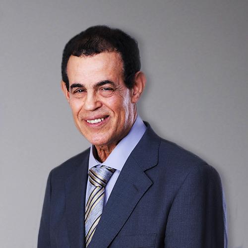 Hamid Badawi